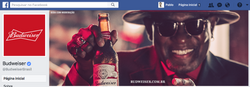 Facebook Budweiser