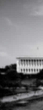 capitol background-05.png