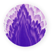 VF_Icon.png