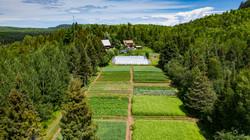 Abazs Farm_3