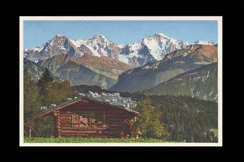 Karte A 8313 Eiger - Mönch- Jungfrau