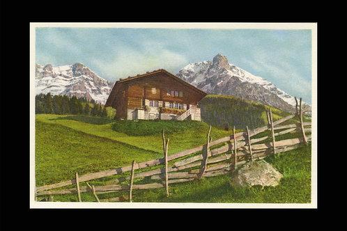 Karte A 1363 Adelboden, Bauernhaus m. Grosslohner