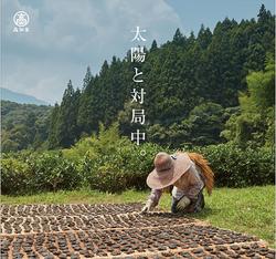 高知県碁石茶
