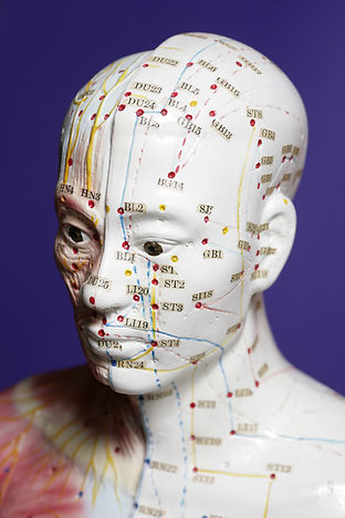 Melbourne traditional chinese medicine acupuncture ehud udi tal
