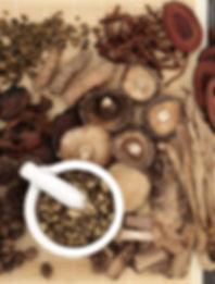 Melbourne traditional chinese medicine ehud udi tal 3 leopold street south caulfield ormond carnegie brighton mckinnon bentleigh