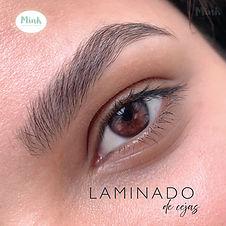 67_Laminado_1.jpg