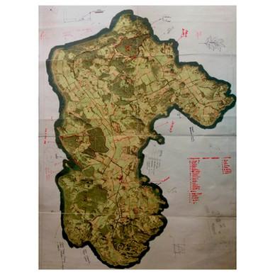Mapeo Huapi.jpg