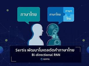 fINAL_Bi-RNN-03-03-03-800x490.jpg