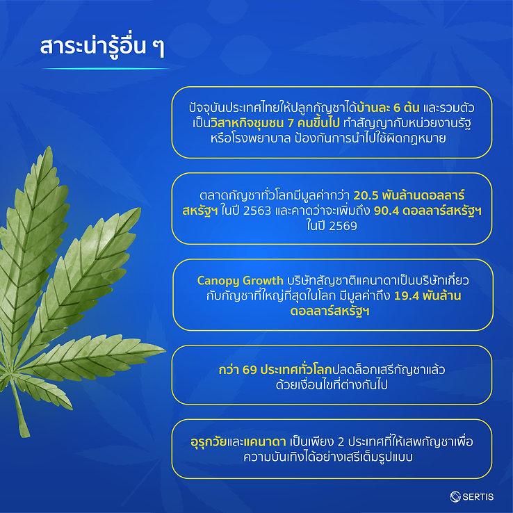Cannabis-CreativeJUN_Sertis-09.jpg