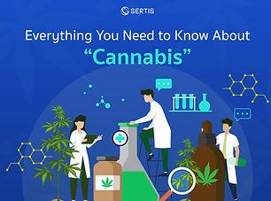 Cannabis-CreativeJUN_Sertis_EN-01.jpg