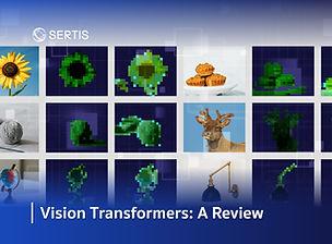 DeepAI-VisionTransformers_Oct2021_Review.jpg