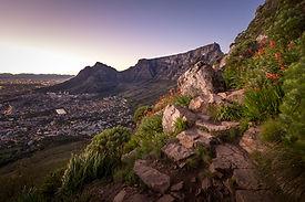 Print Table Mountain