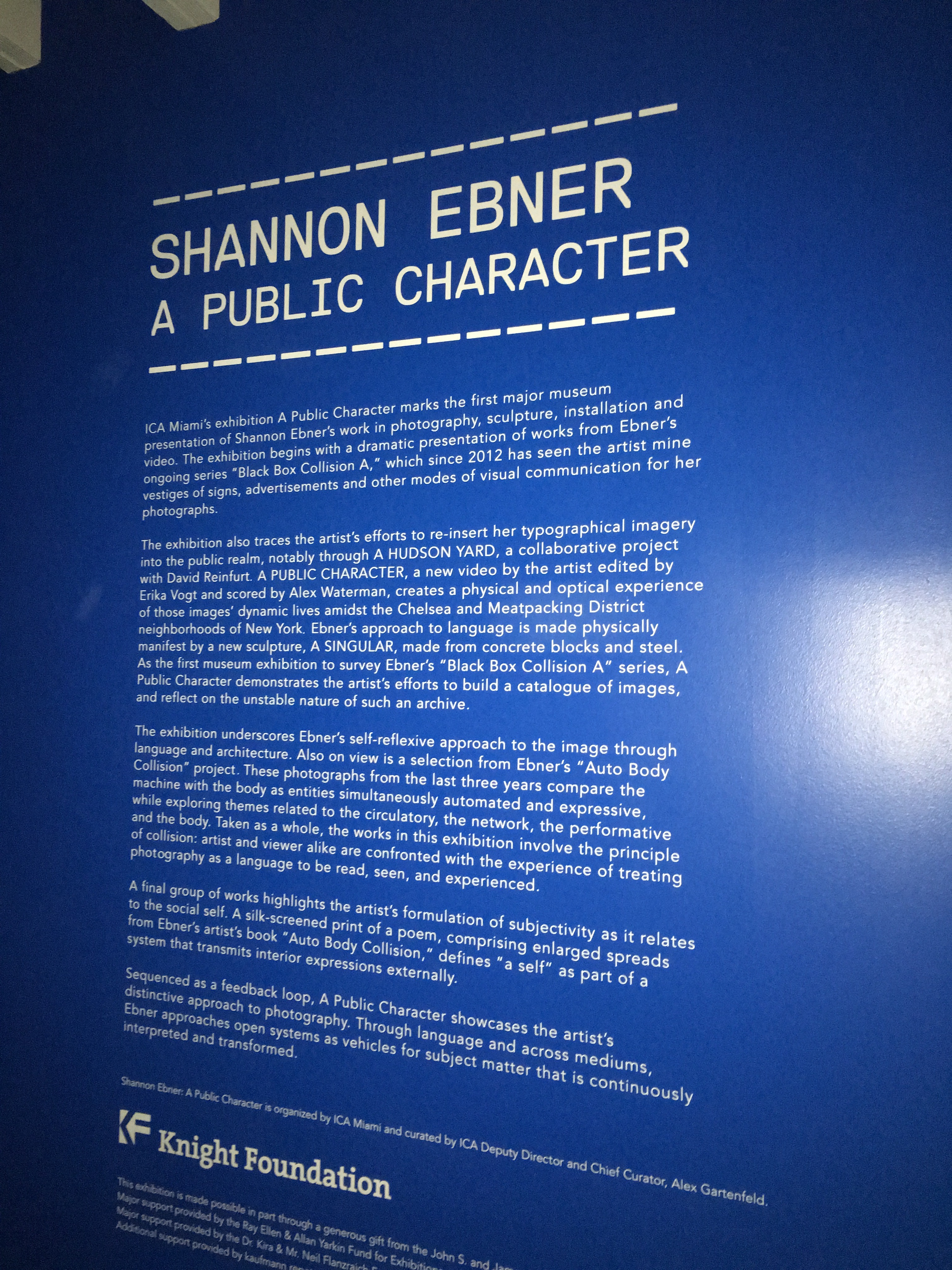 Shannon Ebner, A Public Character