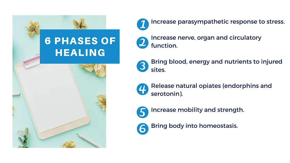 Canva AMT 6 Phases of Healing Slide.png