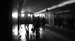 "Fotos de ""A Última Palavra é a Penúltima 2.0"""