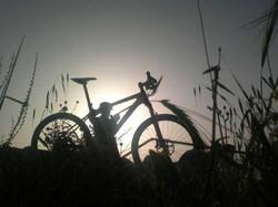 אימון אופניים