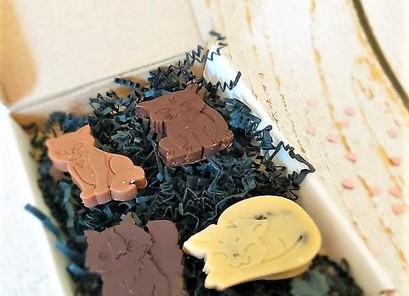 Moggies Choccies - sampler/thank you box