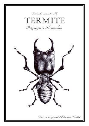 Termite A5