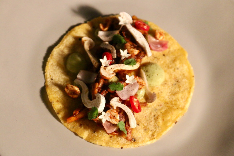 Wild mushrooms taco with vegetables demi and tomatillo sauce