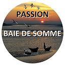 Découverte de la baie de somme avec Passion Baie de Somme