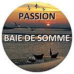 Découvrir la Baie de Somme avec Passion Baie de Somme