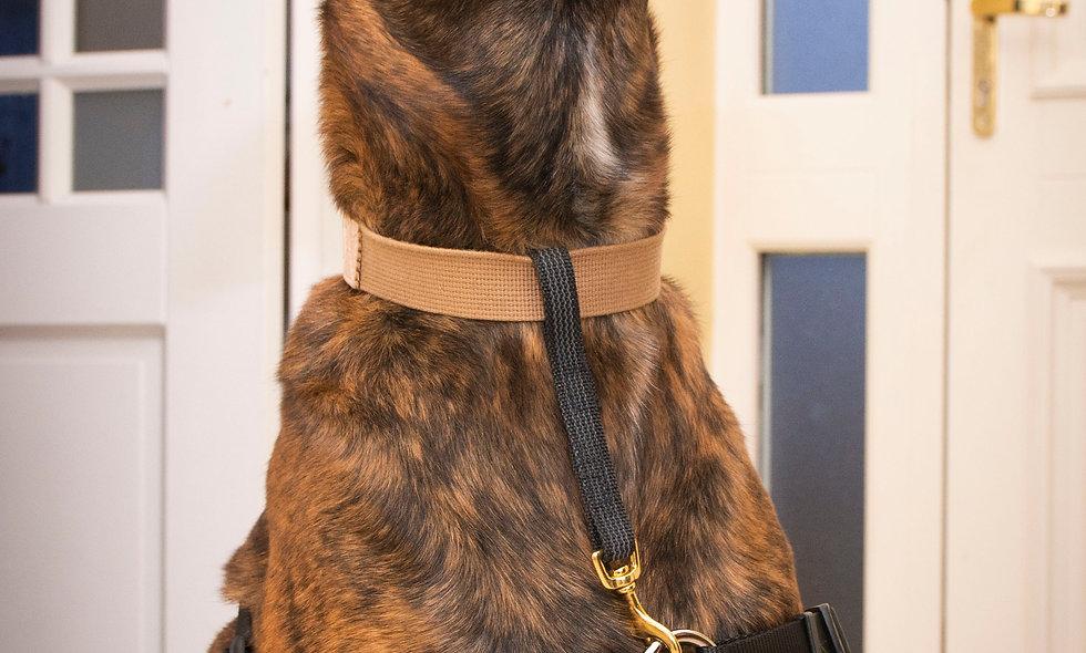 Canine Keepsafe