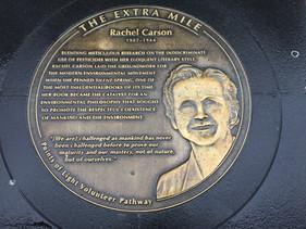 Rachel Carson on the DC Extra Mile