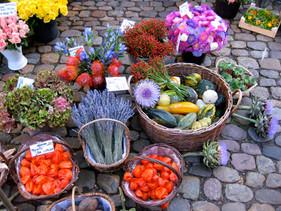 Farmer's Market Freiberg Germany