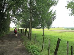 Jakobsweg_ViaGebenensis_2014_082
