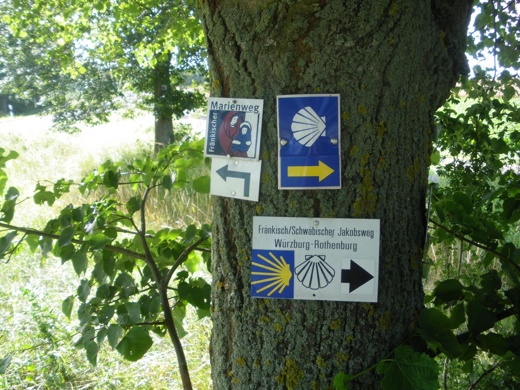 Jakobsweg_Ulm_2011_010