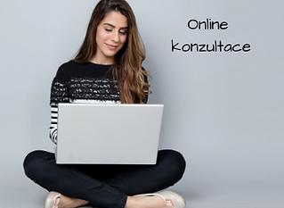 Online konzultace.png