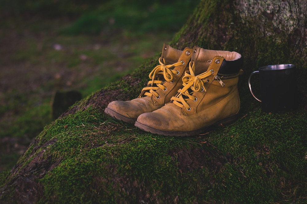 worn hiking boots  on tree root by cup