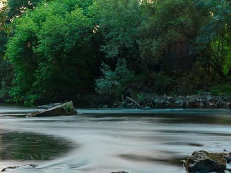 Letting nature inspire peace & calm
