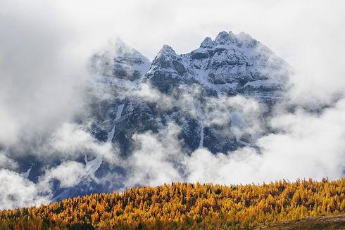 autumn-in-canada-8AL2RH9_edited.jpg