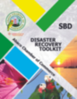 SBD Disaster Toolkit Cover.jpg