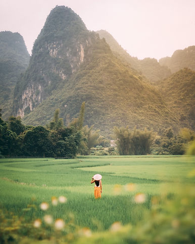photo-of-person-standing-on-green-grass-