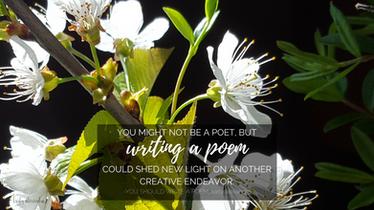 you should write a poem