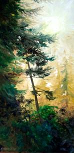Tree Light (Series)