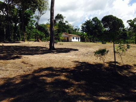 Ref.: 141 - Vendo Lotes, perto do trevo do Galego, em Arraial d'Ajuda, Bahia