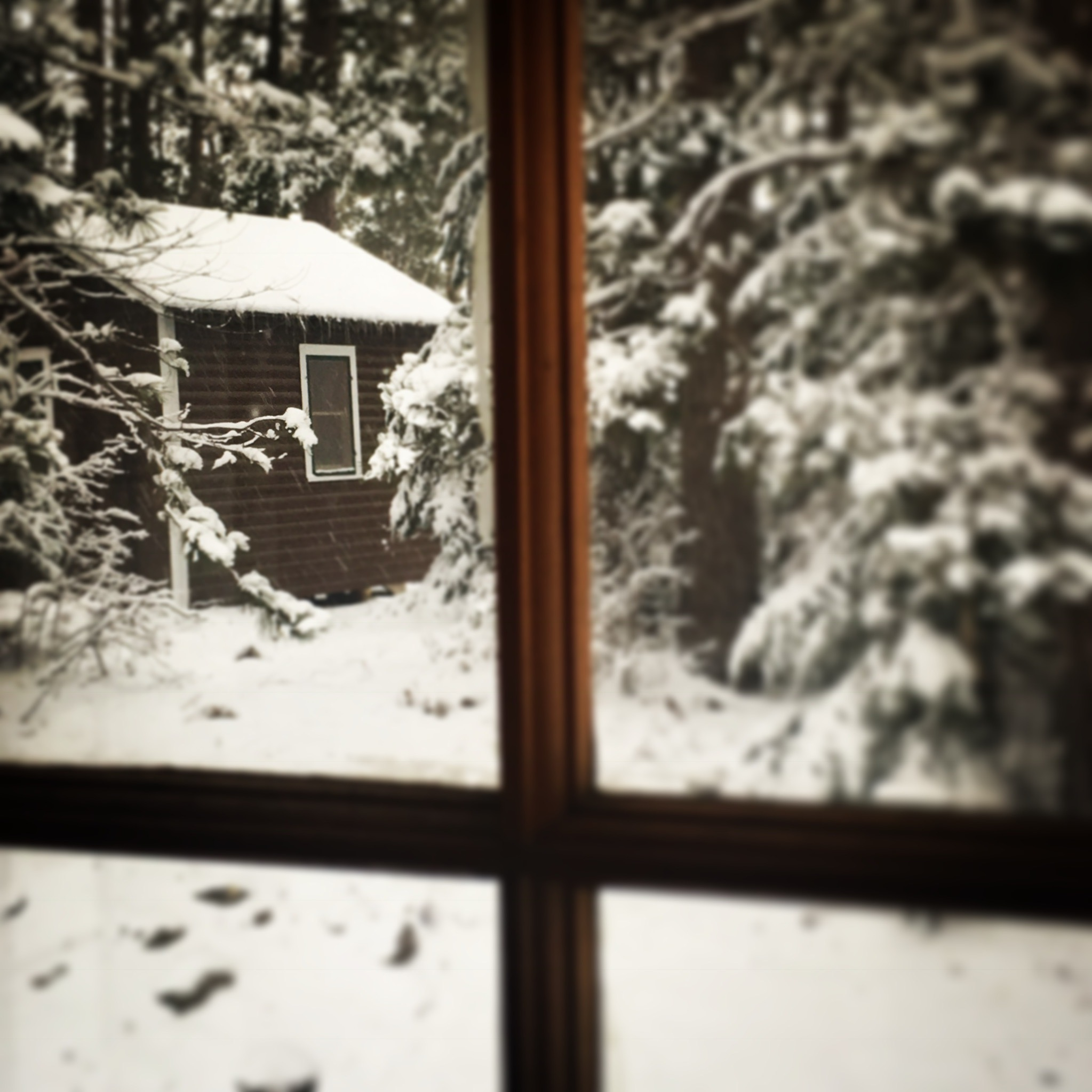 OneRoomCabin_Winter