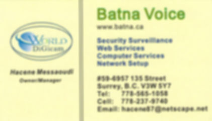 Batna Voice, Security, Web Services, Computer Services