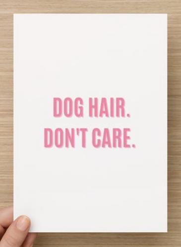 Dog hair. Don't care.