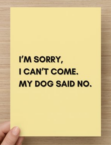 My dog said no.