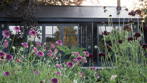 A tour of my garden studio (Part One) and musings on when a dream comes true