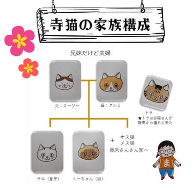 寺猫の家族構成
