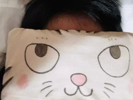 猫のアイマスク