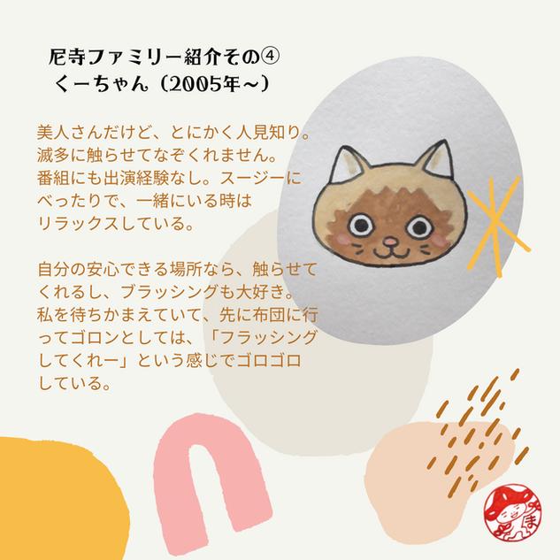 猫・くーちゃん
