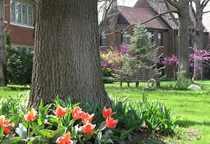 Click here for our monthly neighborhood newsletter