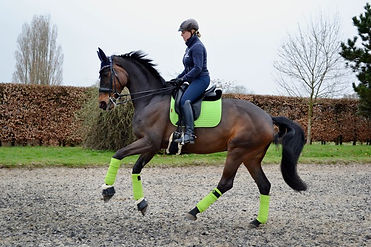 LeMieux-Lime-Green-Dressage-Matching-Set