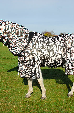 Rhinegold Elite Savanna Fly Rug - Zebra Print